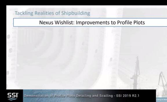 SSI 2019 R2.1 Scaling and Detailing of Profile Plots Walk-through Demonstration